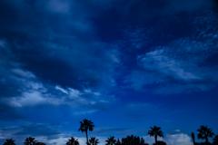A-blue-evening-1