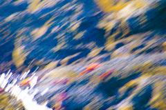 Color-motion-2