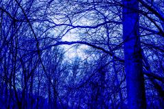 A-blue-slant-2
