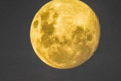 Moon-6-1