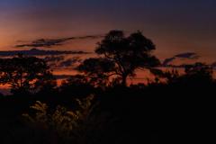 Night-in-Africa-1