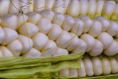 White-corn-from-Quito-1
