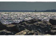 Coney-Island-1