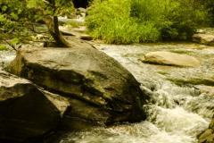 Swannanoa-River-1