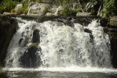 On-the-Swannanoa-River-1